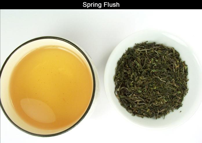 NEPAL TEA