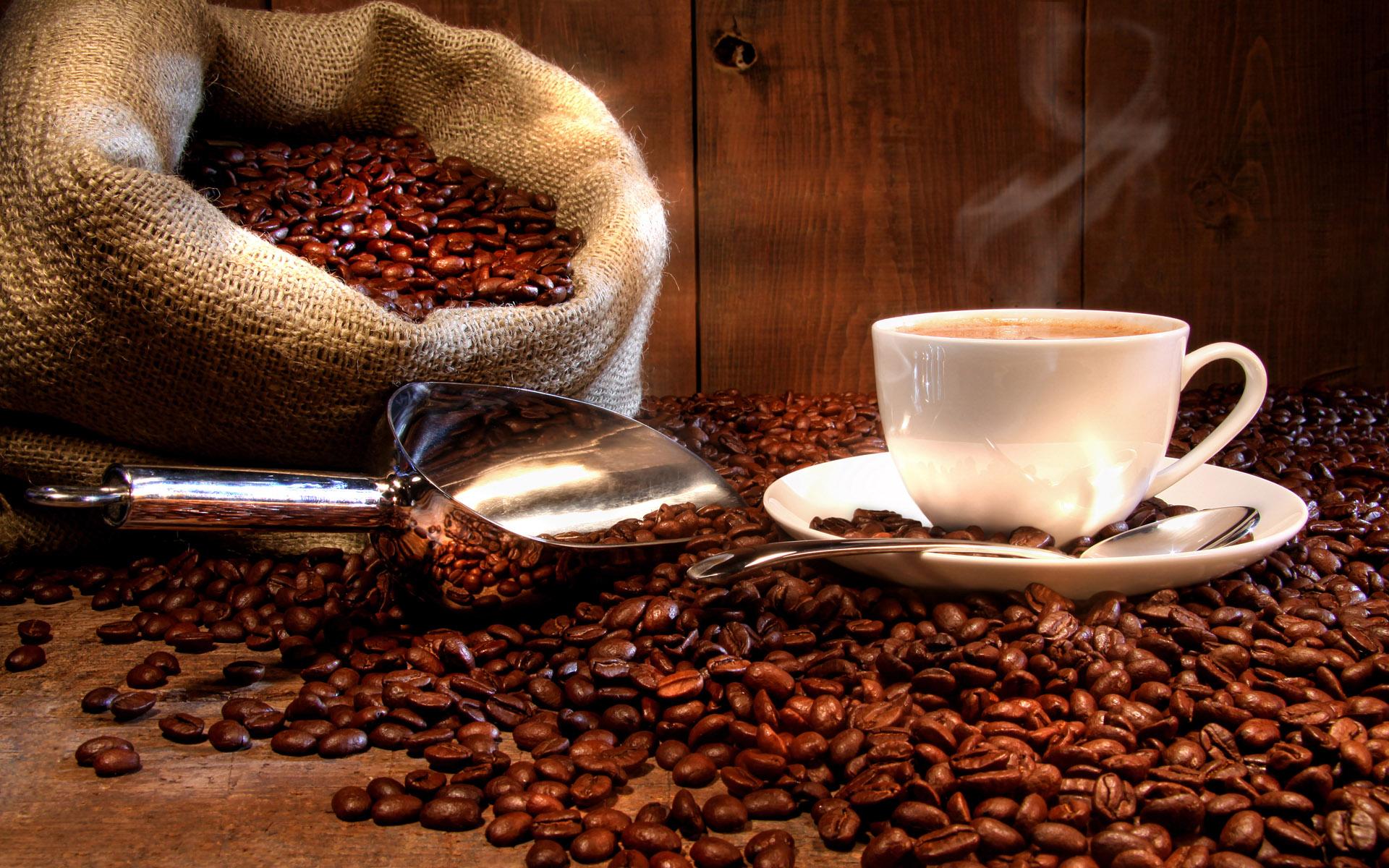 Coffee Investment Forum